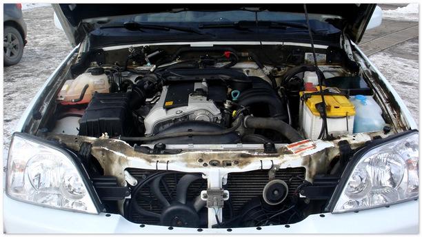 фото двигателя Тагаз Роад Партнер