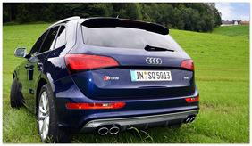 фото Audi SQ5 (вид сзади)